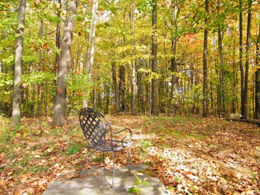 enjoy the peace and beauty of fall at the Self Realization Meditation Healing Centre, Michigan, USA