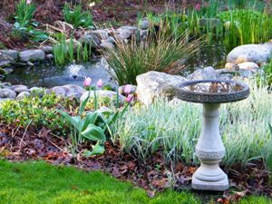 view of birdbath and pond with spring tulips